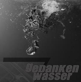 Gedankenwasser-Cover