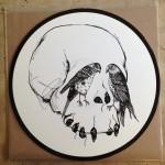 Dot-Blindspot-Erratica-Vinyl-1
