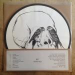 Dot-Blindspot-Erratica-Vinyl-2